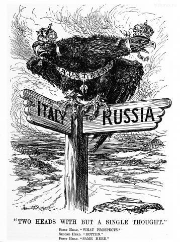 5 июля 1916. Австрийский орел не видит хороших перспектив